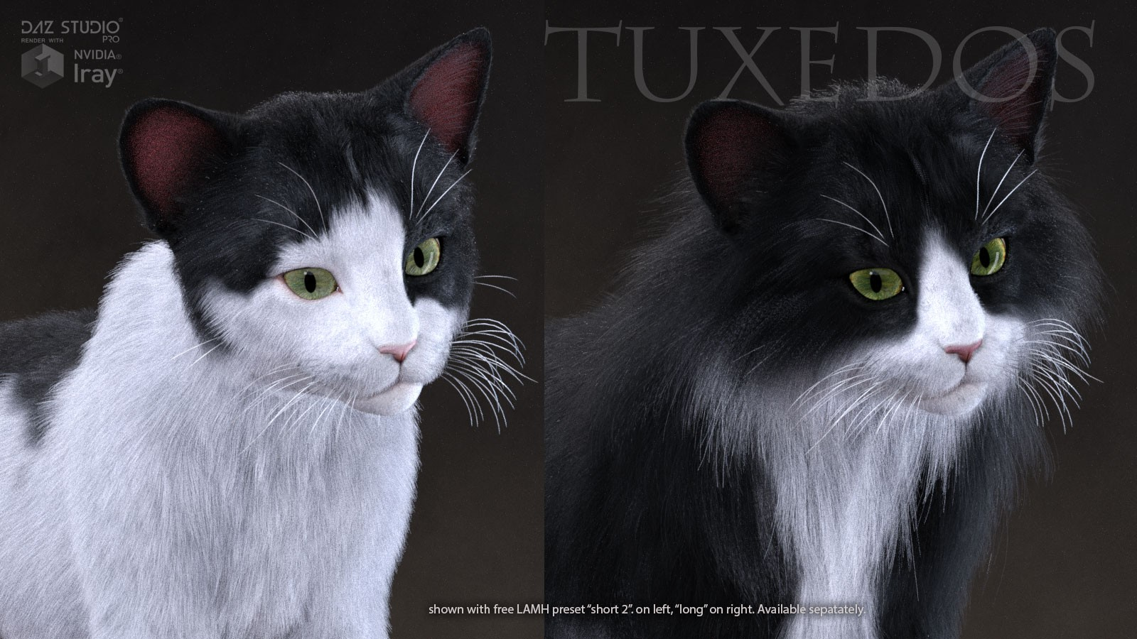 CWRW Black, White & Tuxedos for the HW House Cat - A CWRW Creation ...