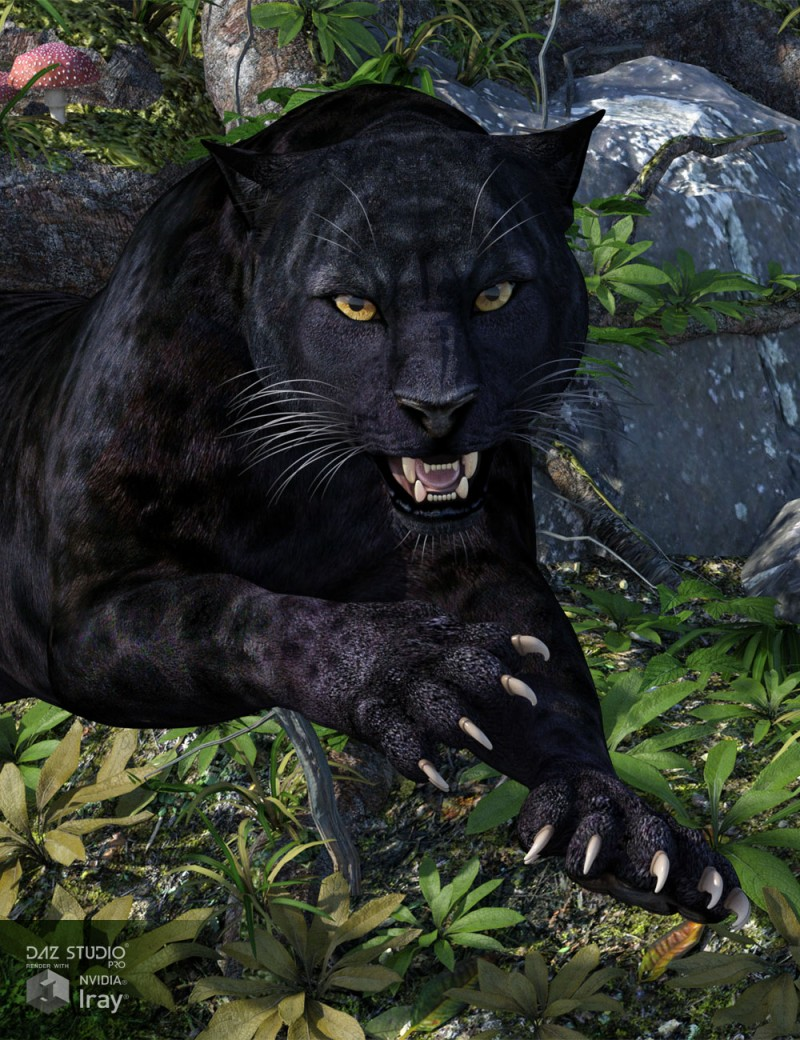 CWRW Black Panther for the HiveWire Big Cat