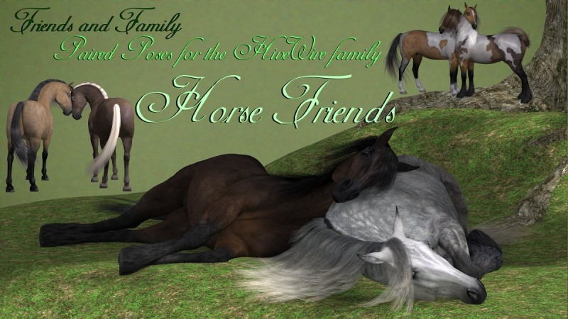 Friends and Family - Horse Friend