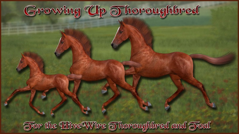 Growing Up Thoroughbred