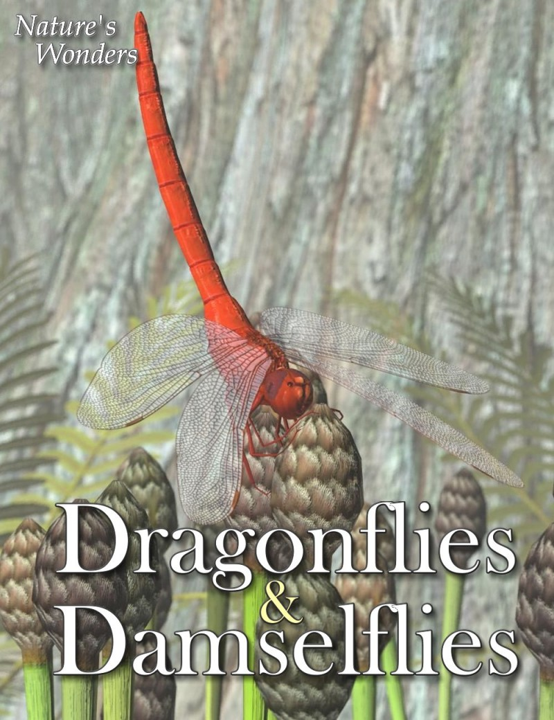 Nature's Wonders Dragonflies & Damselflies