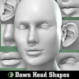 Dawn's Head Shapes
