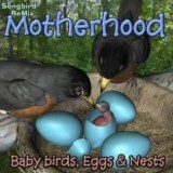 SBRM Motherhood