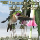 SBRM Hummingbirds of North America