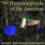 SBRM Hummingbirds of South America