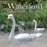 SBRM Waterfowl Vol 3 - Swans of the World