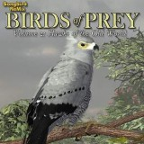 SBRM Birds of Prey  Vol 2 - Hawks of the Old World