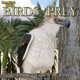 SBRM Birds of Prey  Vol 4 - Eagles of the World