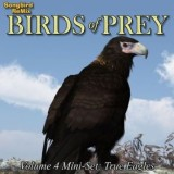 SBRM Birds of Prey Vol 4 Mini-Set - True Eagles