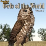 SBRM Owls of the World Volume 2