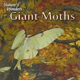 Nature's Wonders Giant Moths