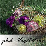 phd 2-sided Vegetation Iray Shader