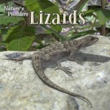Nature's Wonders Lizards