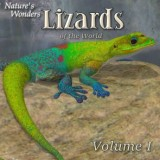 Nature's Wonders Lizards of the World Vol. 1