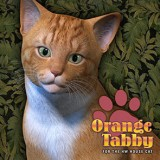 CWRW Orange Tabby for the HW House Cat