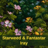 Starweed and FantaStar Iray Addon