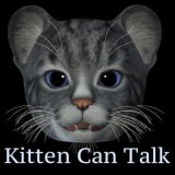 BNB Talking Kitten