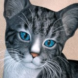 Iray Eyes for the HiveWire House Cat