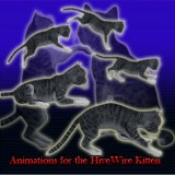 Animations for the HiveWire Kitten