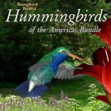 Songbird ReMix Hummingbirds of the Americas