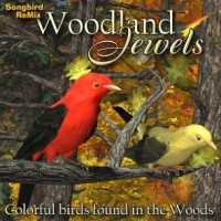 SBRM Woodland Jewels