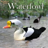 SBRM Waterfowl Vol 2 - Sea & Diving Ducks
