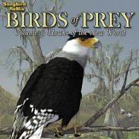 SBRM Birds of Prey  Vol 3 - Hawks of the New World