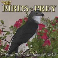SBRM Birds of Prey Vol 3 Mini-Set - Hawks of the U.S.