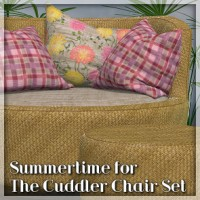 Summertime for The Cuddler Chair Set