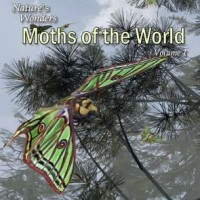 Nature's Wonders Moths of the World Vol. 1