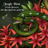 Jungle Heat for Asiatic Lily