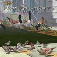 Songbird Remix Flock Formations 2