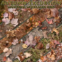 Autumn Excursion