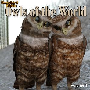 Songbird ReMix Owls of the World Volume 1