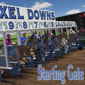 Pixel Downs Starting Gate