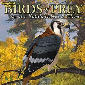 Songbird ReMix Birds of Prey Vol 1 - Kestrels, Hobbys & Falcons