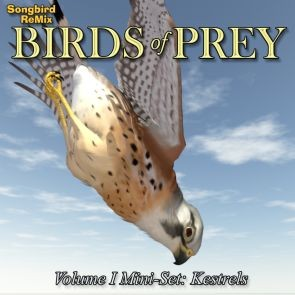 Songbird ReMix Birds of Prey Vol 1 Mini-Set - Kestrels
