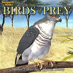 Songbird ReMix Birds of Prey Vol 2 Mini-Set -African Hawks
