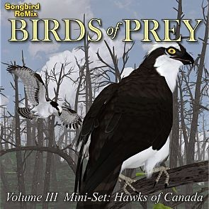 Songbird ReMix Birds of Prey Vol 3 Mini-Set - Hawks of Canada