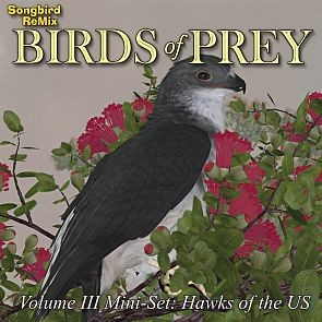Songbird ReMix Birds of Prey Vol 3 Mini-Set - Hawks of the U.S.