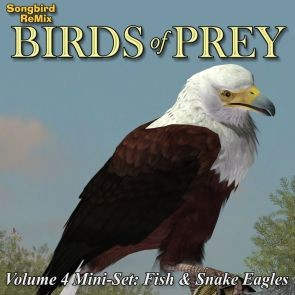 Songbird ReMix Birds of Prey Vol 4 Mini-Set - Fish and Snake Eagles