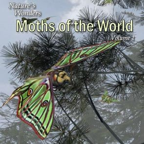 Nature's Wonder Moths of the World Vol. 1