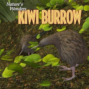 Nature's Wonders Kiwi Burrow