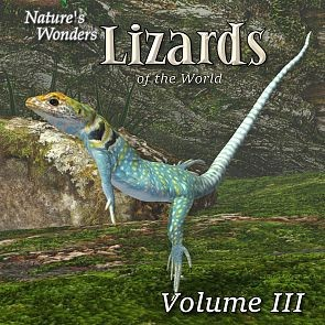 Nature's Wonders Lizards of the World Vol. 3