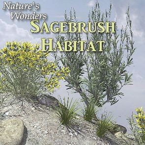 Nature's Wonders Sagebrush Habitat