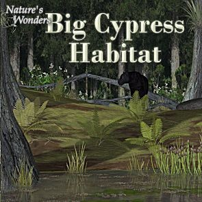 Nature's Wonders Big Cypress Habitat
