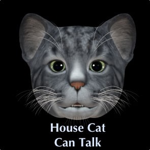 BNB Talking House Cat