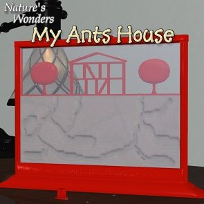 Nature's Wonders My Ants House
