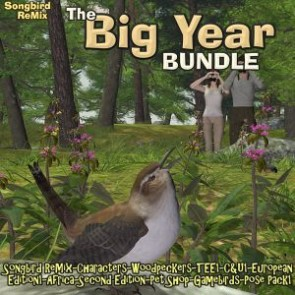 Songbird ReMix Big Year 1 Stack