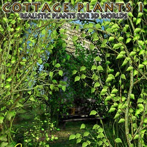 Cottage Plants I